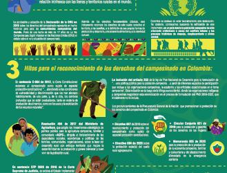 Infografía: Derechos del Campesinado en Colombia