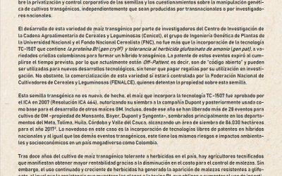"""Comunicado a la opinión pública. El nuevo maíz transgénico """"made in Colombia"""": profundización del desastre para los agricultores"""