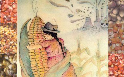 Contaminación genética del maíz en Colombia