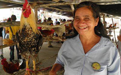 Proyecto de modificación al Decreto 486 de 2020 trabajado por la Red Nacional de Agricultura Familiar-RENAF y la Bancada Alternativa