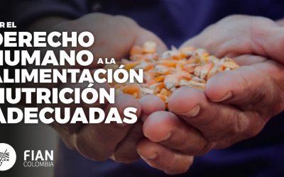Radican proyecto para garantizar el derecho a la alimentación